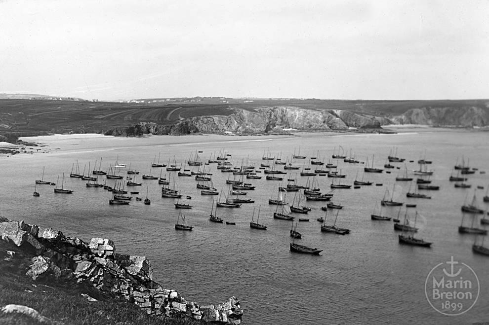 Flottille de sardiniers au mouillage dans la baie de Pen-Hir (Camaret) (1910)